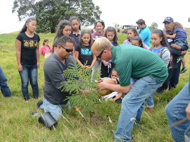 Group-planting-tree-small-size.jpg