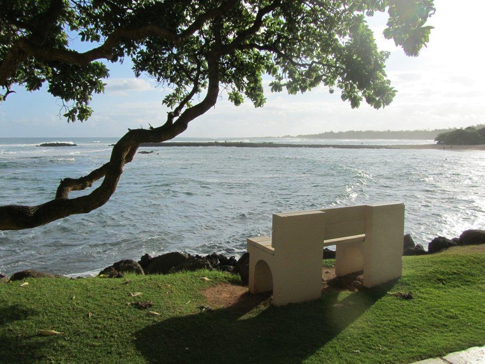 8216268730 - bench @TurtleBayResort #oahu #northshore.jpg