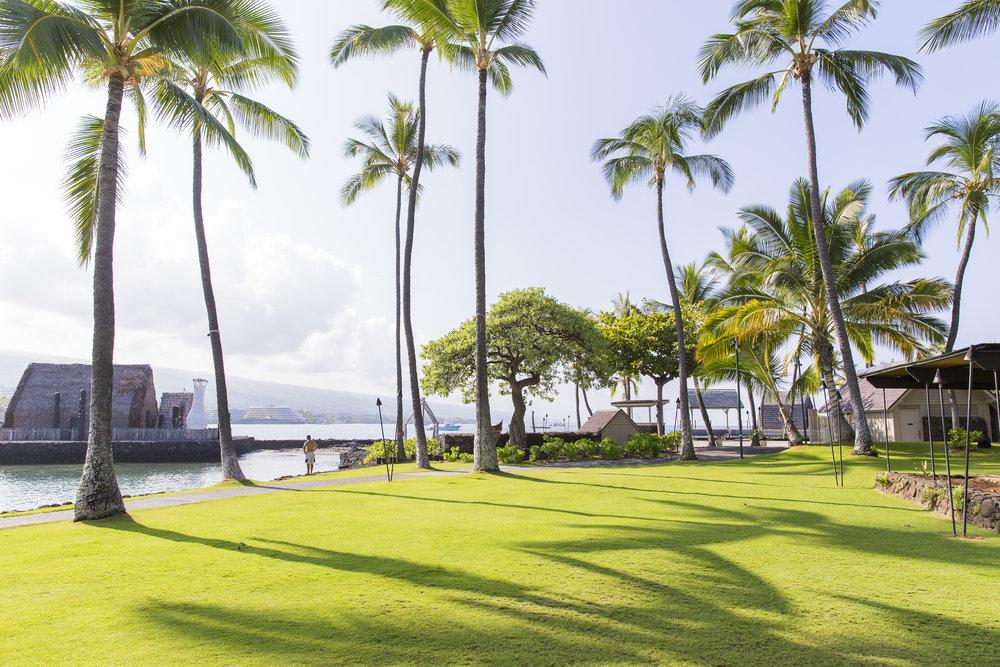 Grounds at King Kamehameha Hotel.JPG