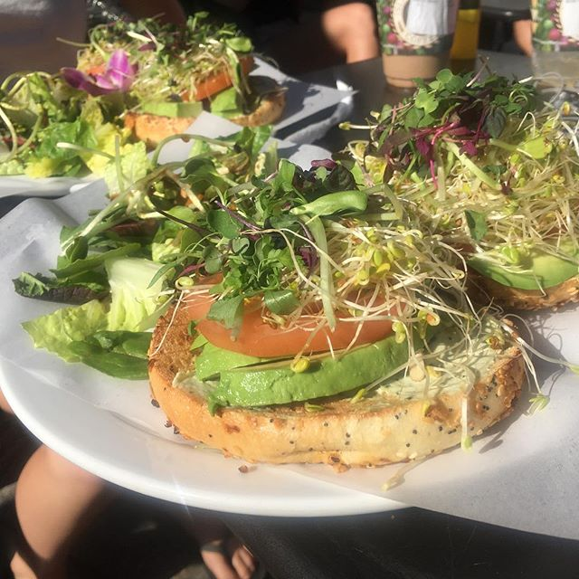 If you are staying in @kaanapaliresort We loved @islandvintagecoffee #vegetarian bagel. As they say ...#onogrindz  #maui #food #breakfast #yum #hawaii #avocado #avocadotoast #eatmaui
