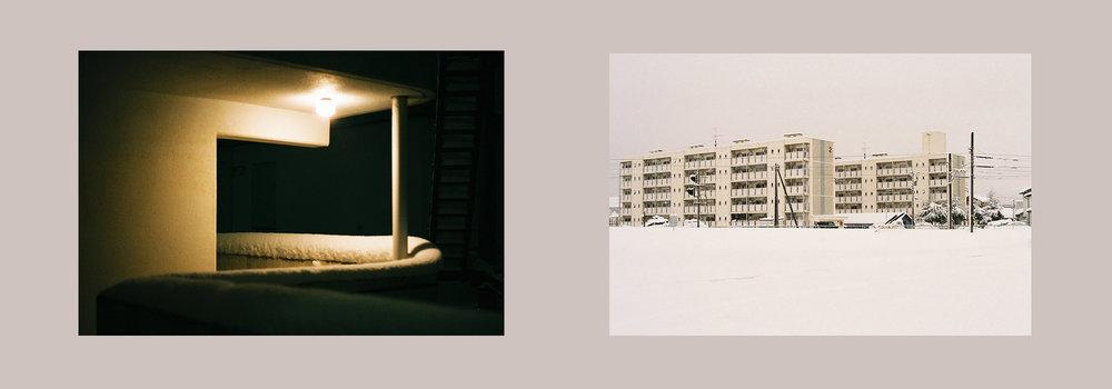 Photographs by Rachel Brandon for Mimicry