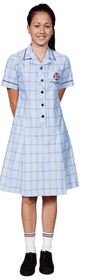 Knee length tartan blue dress.
