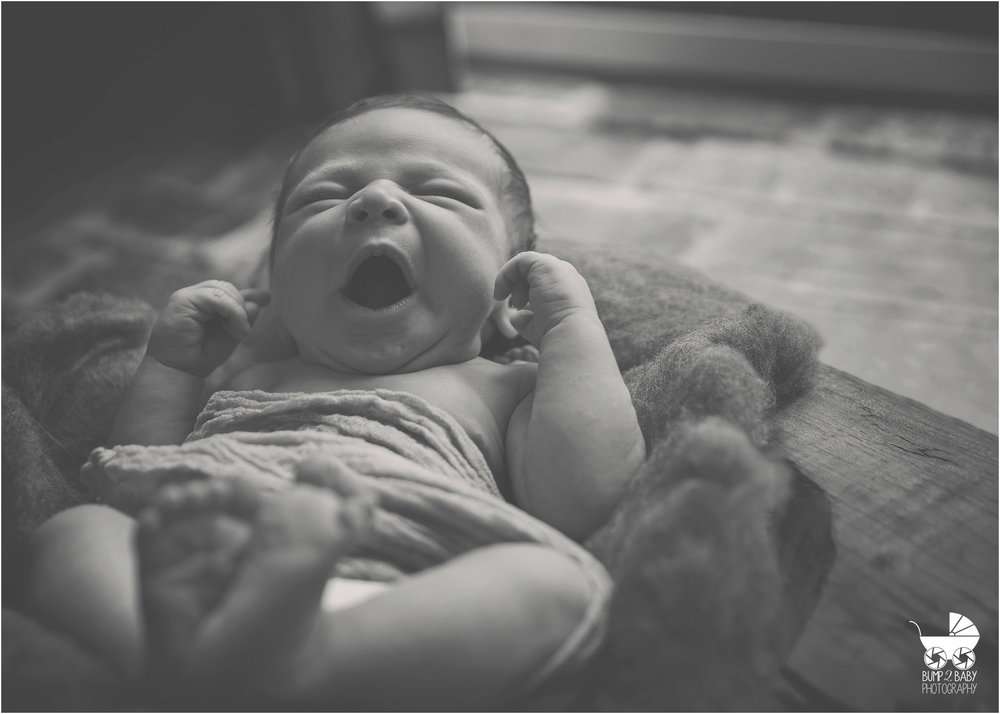 Boston's Best Newborn, Toddler, Maternity, Family and Cakesmash Photography Company
