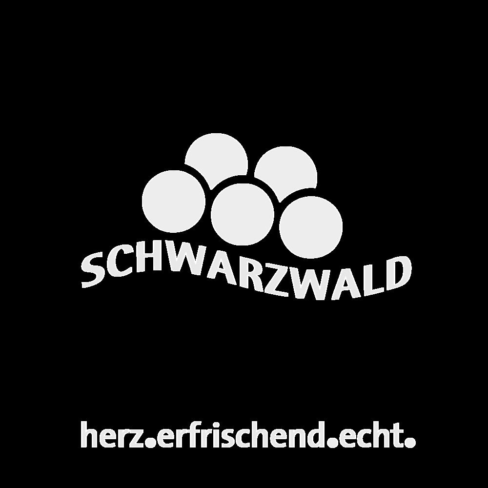 Schwarzwaldtourismus.png