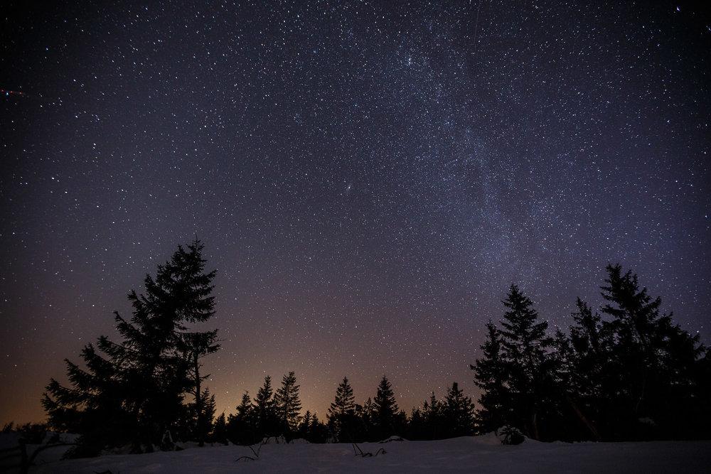 150213_winter_galerie_06.jpg