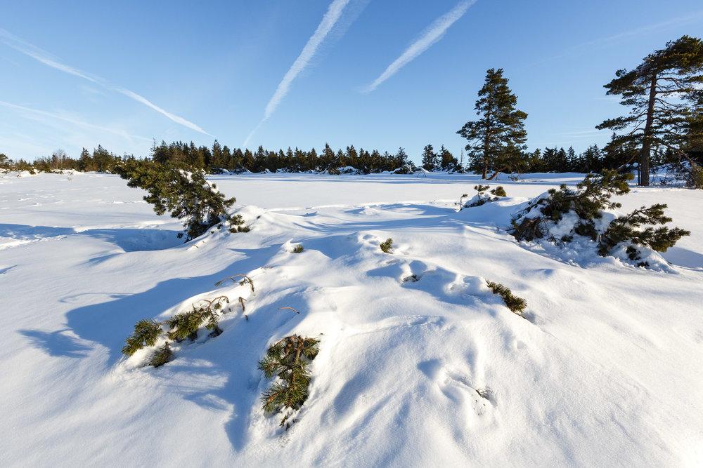 150213_winter_galerie_09.jpg