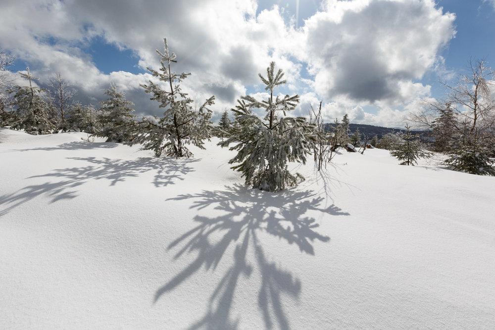 150228_winter_galerie_23.jpg