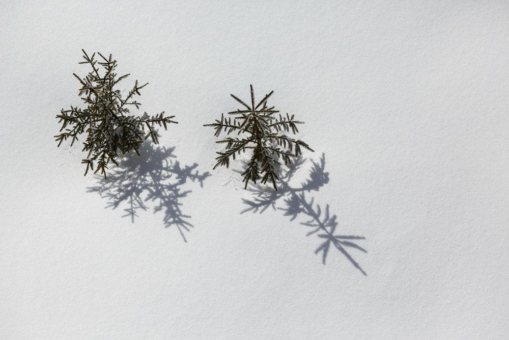 150228_winter_galerie_25.jpg