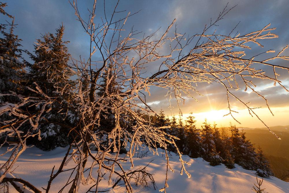 150228_winter_galerie_39.jpg