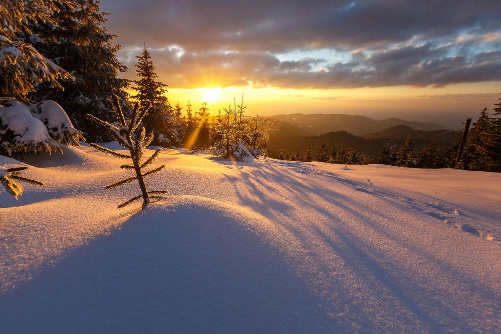 150228_winter_galerie_40.jpg