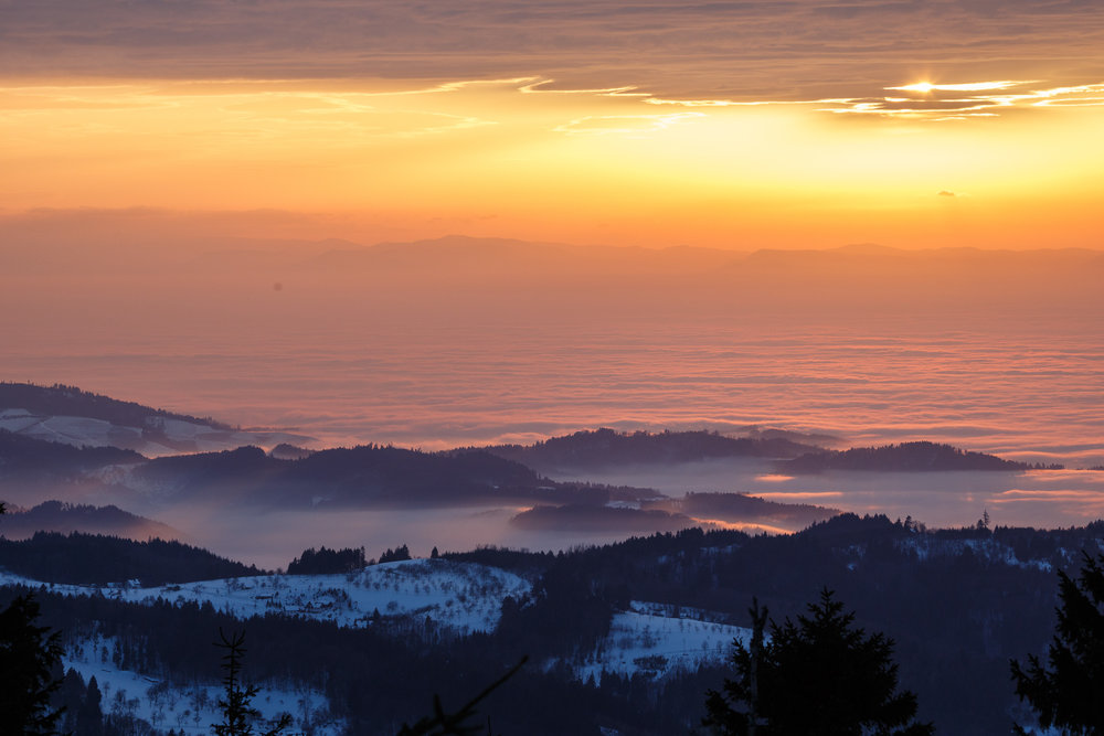 150213_winter_galerie_13.jpg