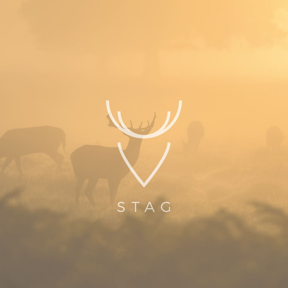 Stag - Apollo Creative Co - Hampshire Graphic Design