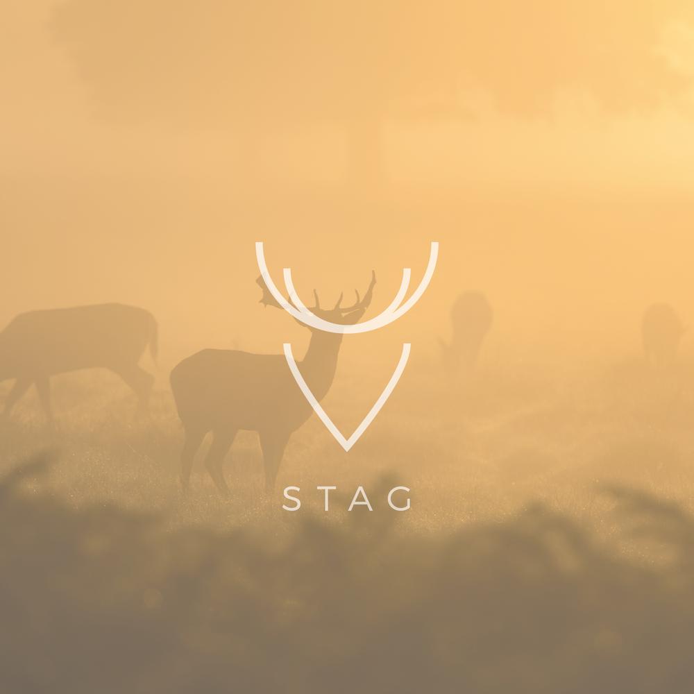 Stag - Apollo Creative Co - Hampshire Graphic Design