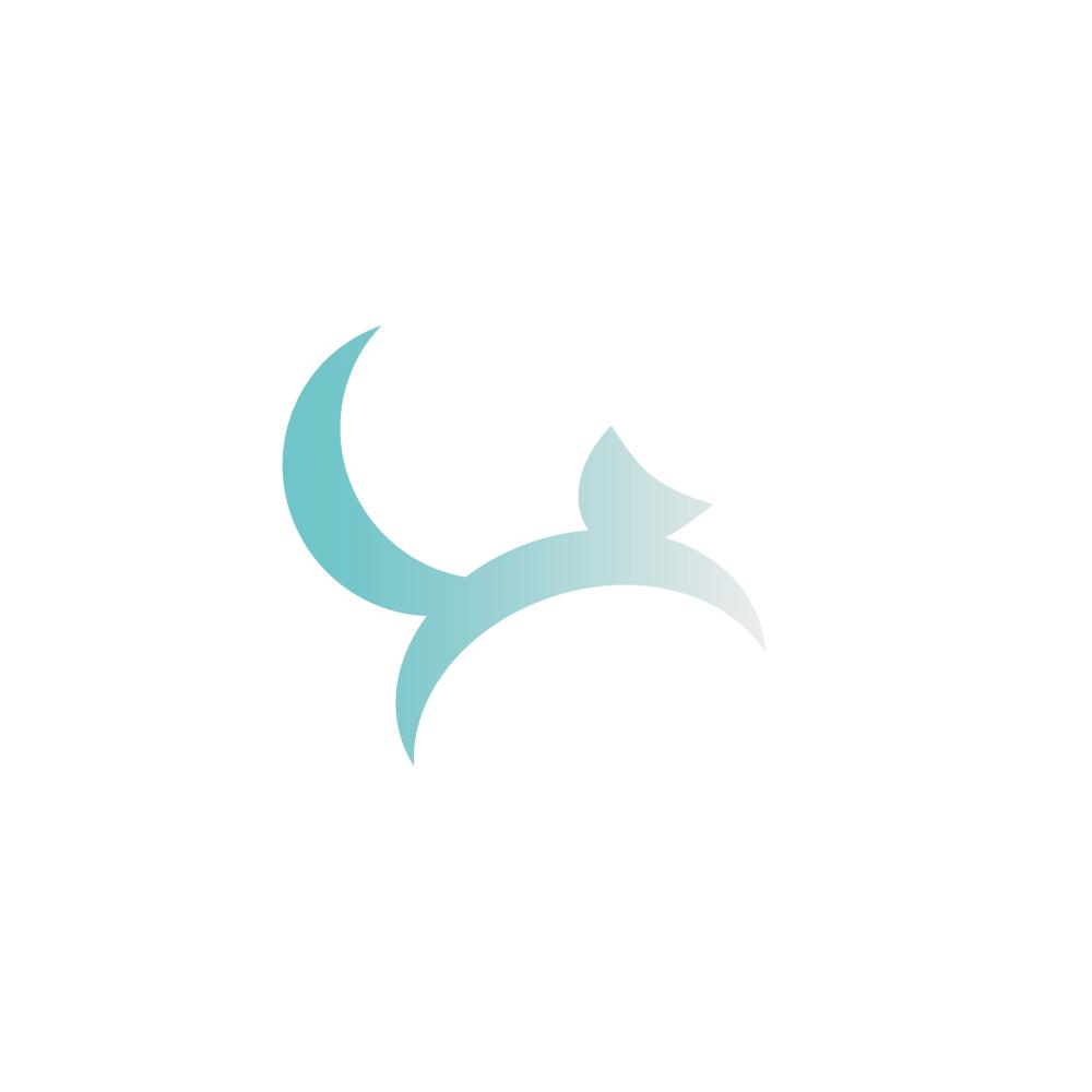 Artic Fox Logo - Apollo Creative Co. - Hampshire Graphic Design