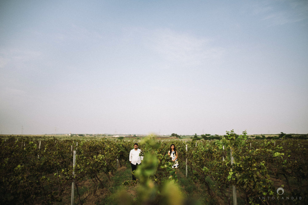 vineyardprewedding-coupleshoot-intocandid-photography-destination-wedding-photographer-01.jpg