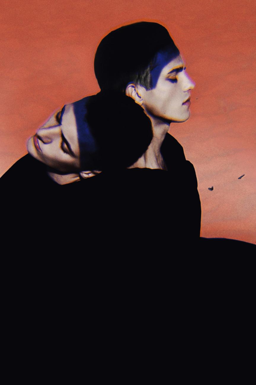 vulture03.jpg