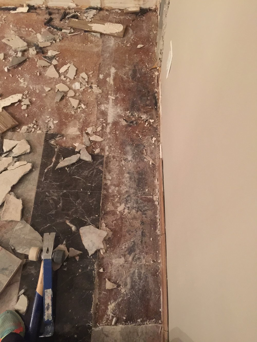 Mold under the Tile- EEEKKK!