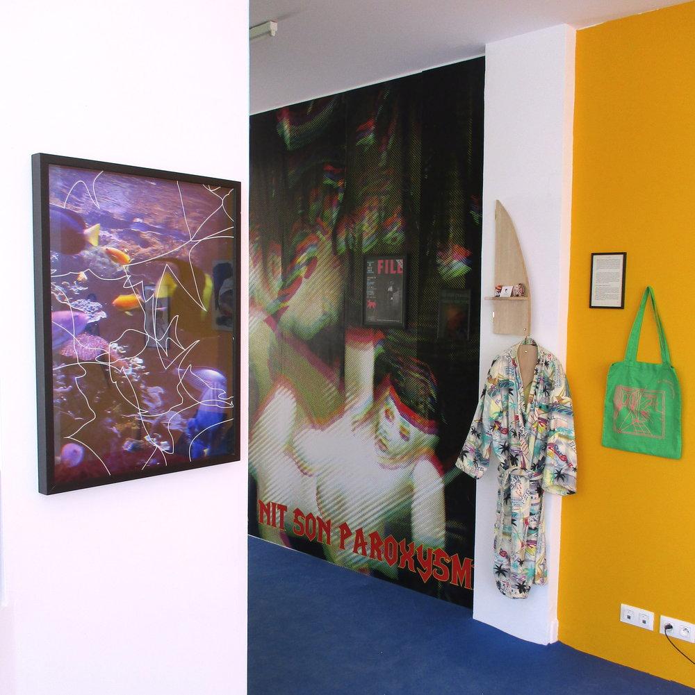 """Vue de l'installation """"Les Appartements du Président. Chapitre 1 : La Chambre"""" au Centre d'art Le Consortium à Dijon (avril / mai 2017)"""