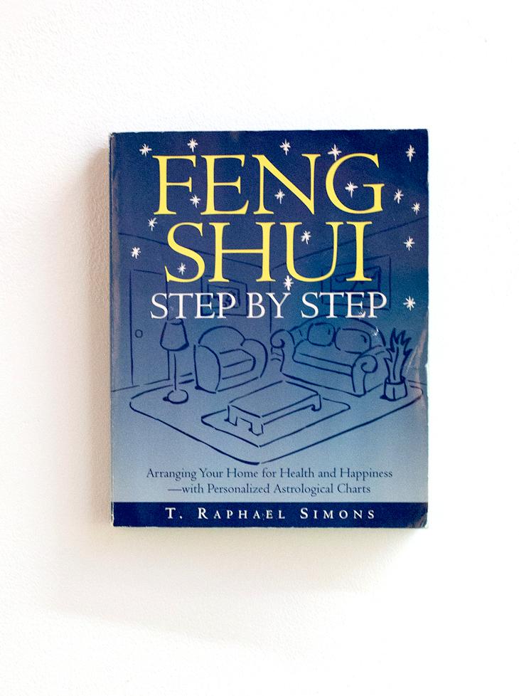 Feng Shui, François Curlet 2012