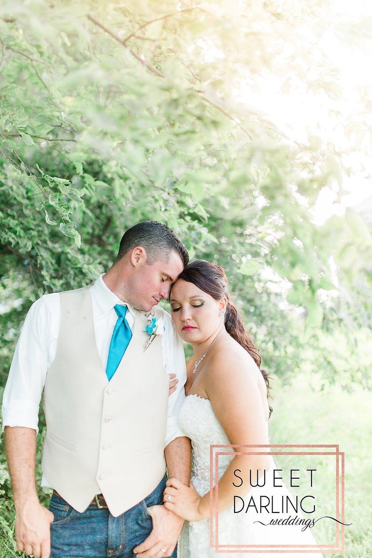 wedding-barn-farm-horses-sparkler-exit-paxton-il-champaign-wedding-photographer-darling-sweet_0264