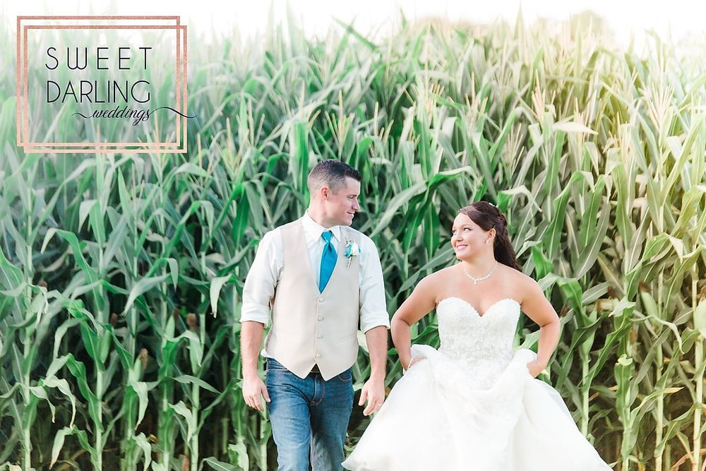 wedding-barn-farm-horses-sparkler-exit-paxton-il-champaign-wedding-photographer-darling-sweet_0265