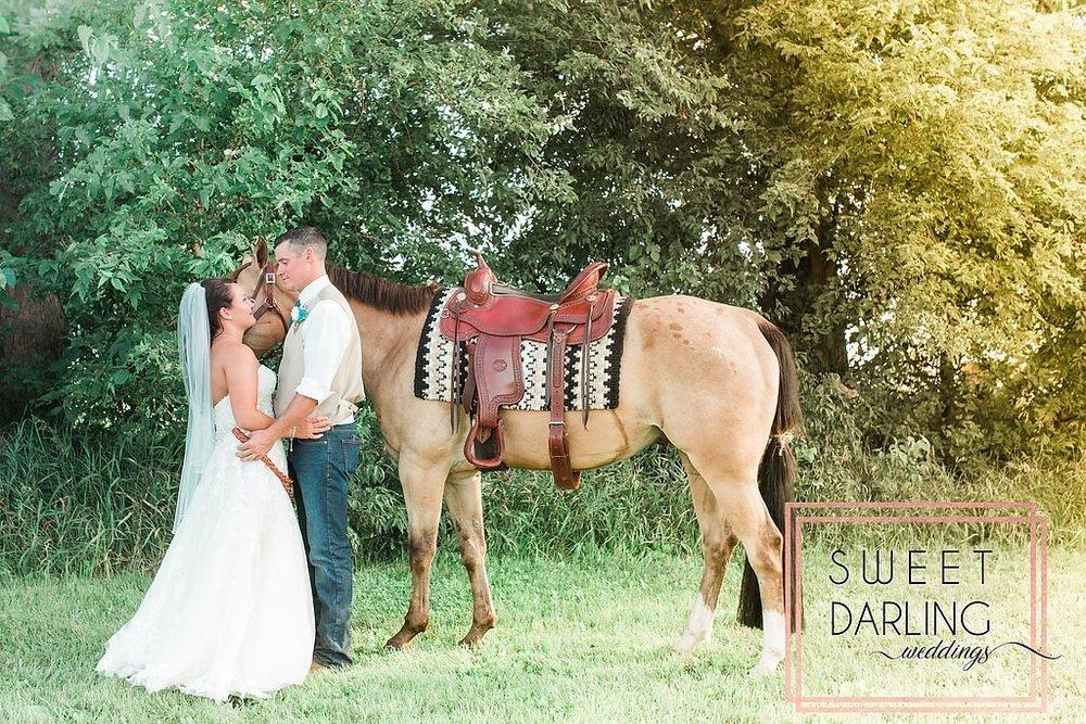 wedding-barn-farm-horses-sparkler-exit-paxton-il-champaign-wedding-photographer-darling-sweet_0269