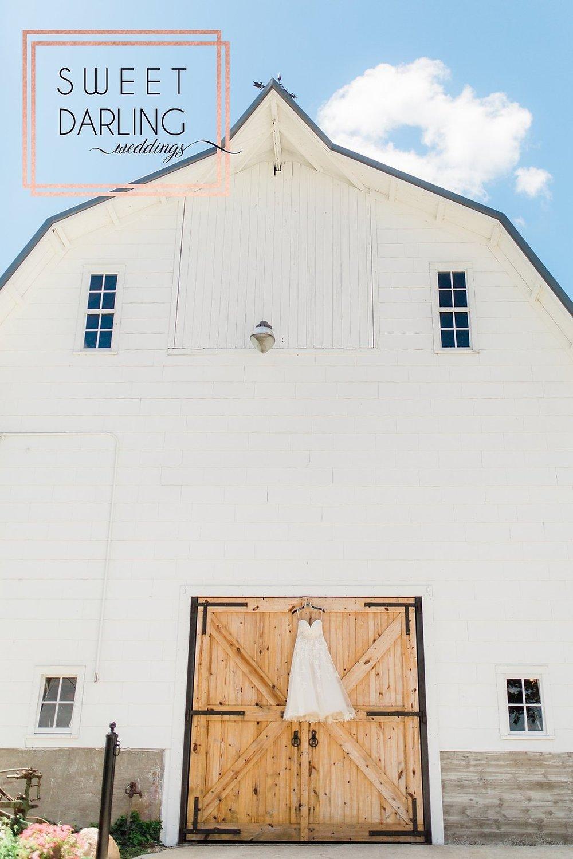 wedding-barn-farm-horses-sparkler-exit-paxton-il-champaign-wedding-photographer-darling-sweet_0274