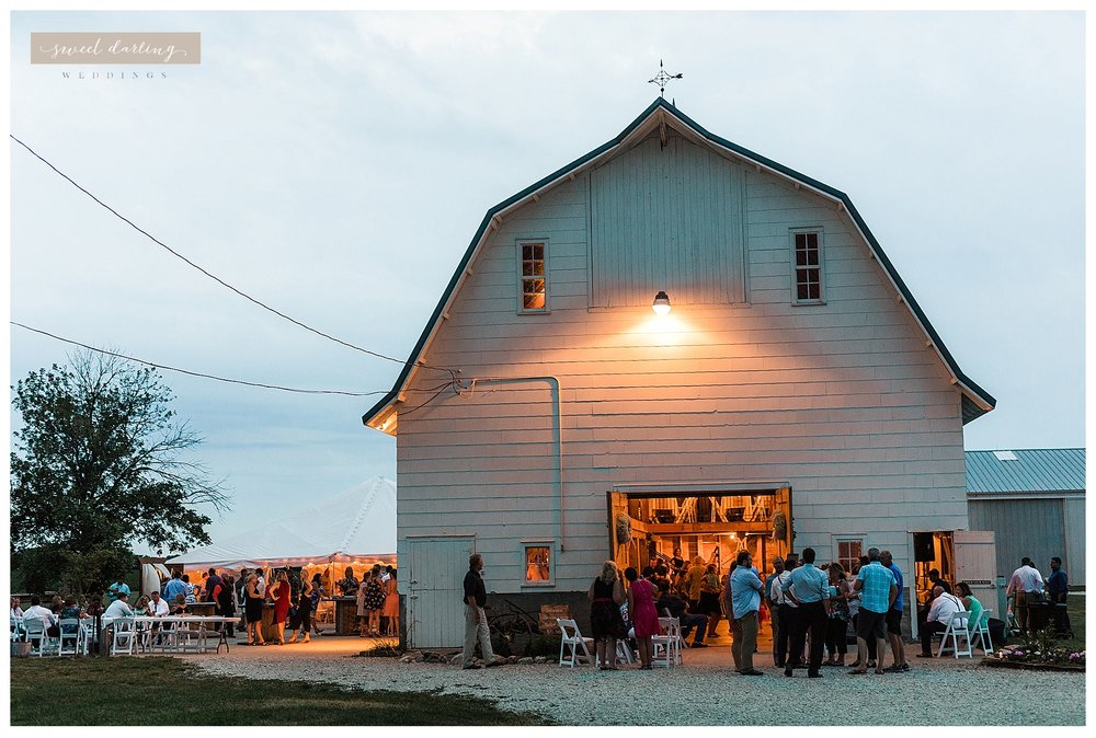 Rpaxton-illinois-engelbrecht-farm-country-wedding-photographer-sweet-darling-weddings_1262.jpg