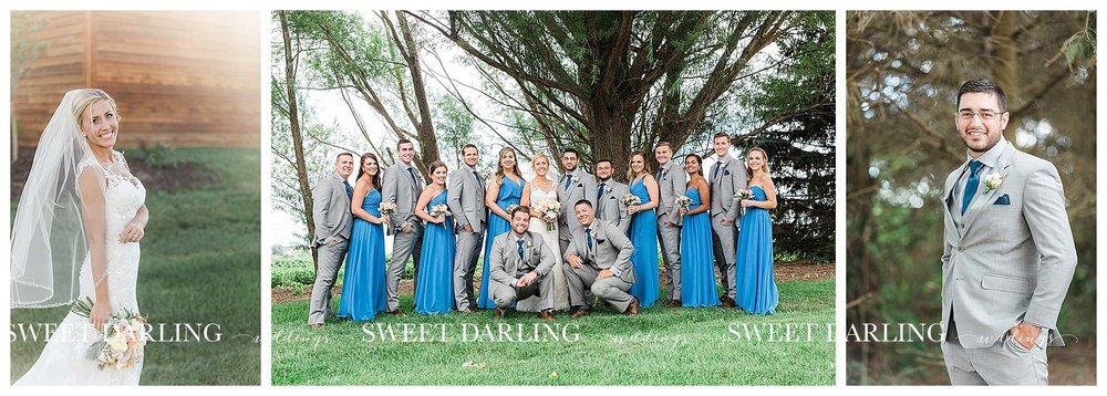 champaign-county-illinois-Pear-Tree-Estate-sweet-darling-weddings-photography_1496.jpg