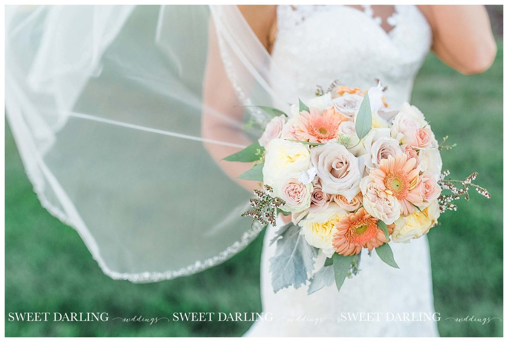 champaign-county-illinois-Pear-Tree-Estate-sweet-darling-weddings-photography_1504.jpg