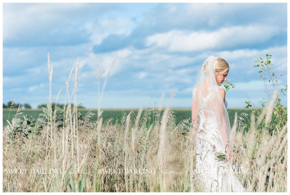 champaign-county-illinois-Pear-Tree-Estate-sweet-darling-weddings-photography_1510.jpg