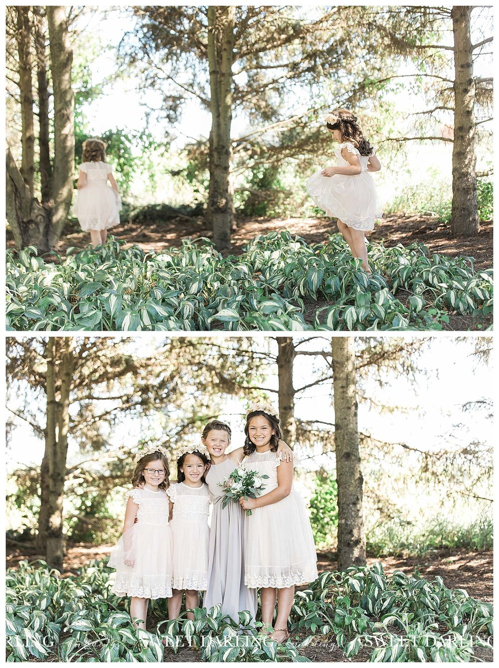 Flower girls in hosta at Pear Tree Estate