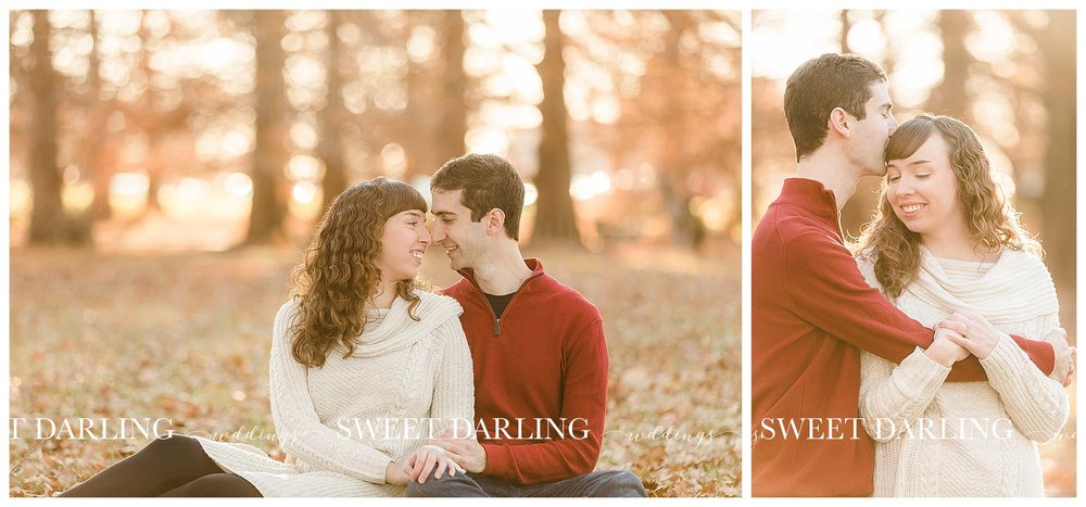 Fall engagement session at University of Illinois arboritum
