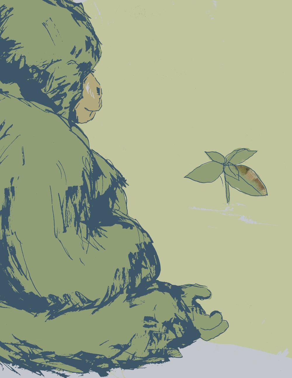 9_Greenandblueplant.jpg
