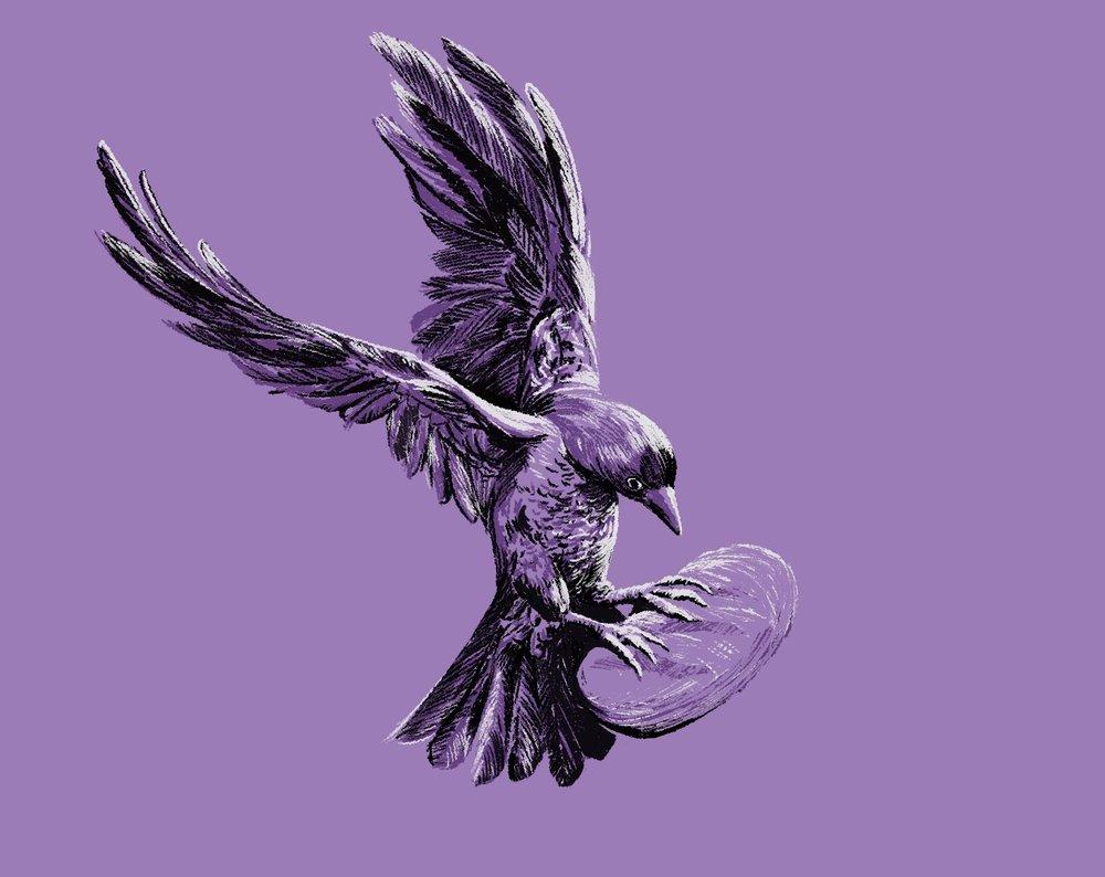 2019_Procopiodraws_Raven.jpg