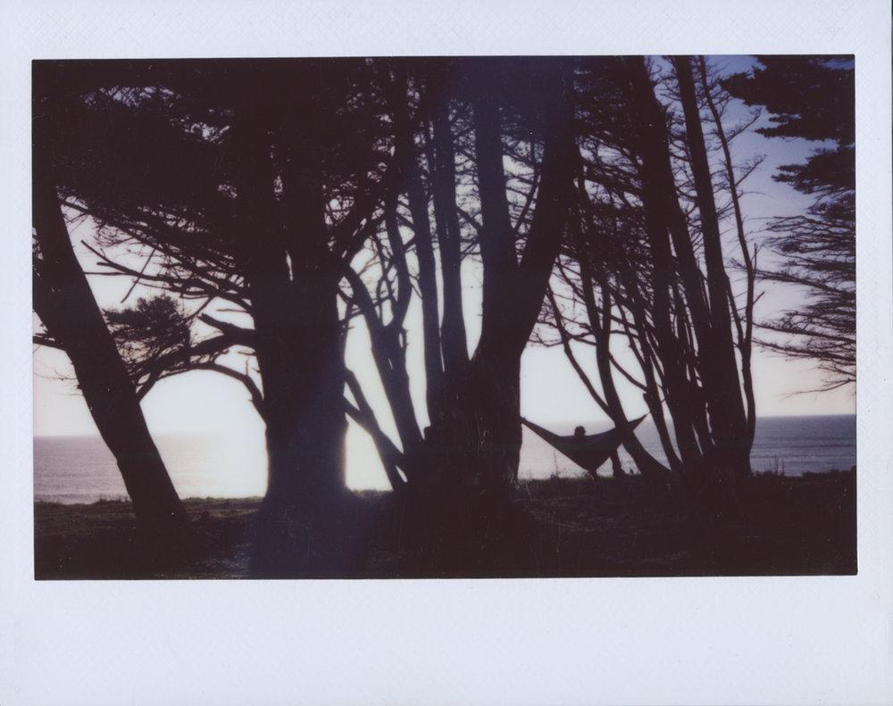 Polaroid Scans59.jpg