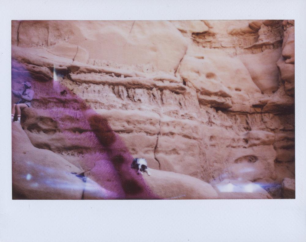 Polaroid Scans73.jpg