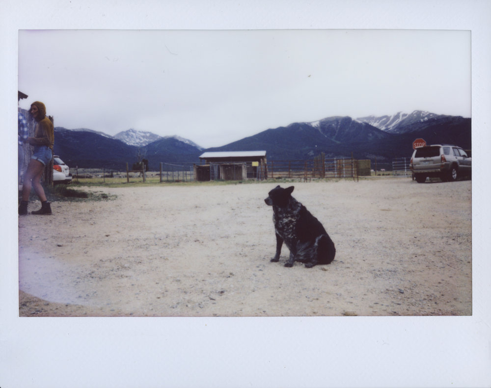 Polaroid Scans76.jpg