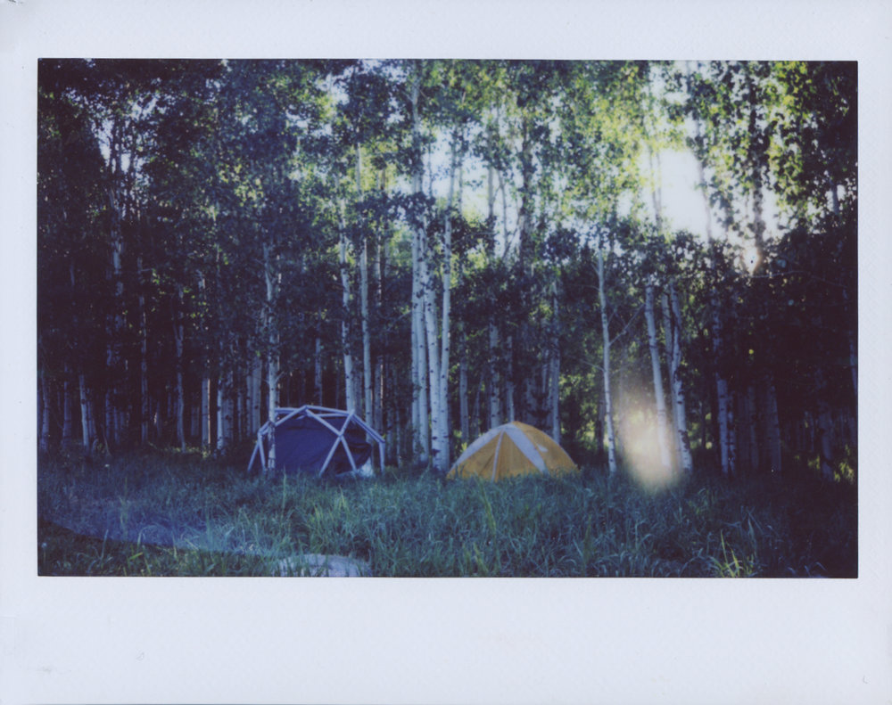 Polaroid Scans106.jpg