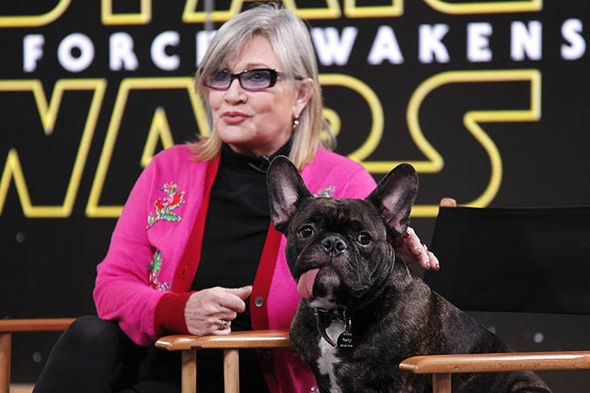 Carrie Fisher Animal Lover