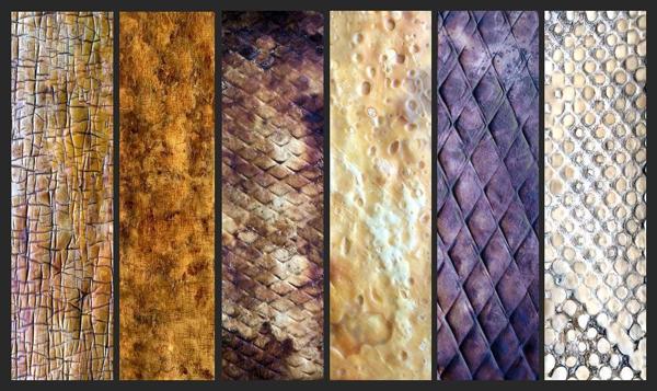 Mycoworks mycelium leather
