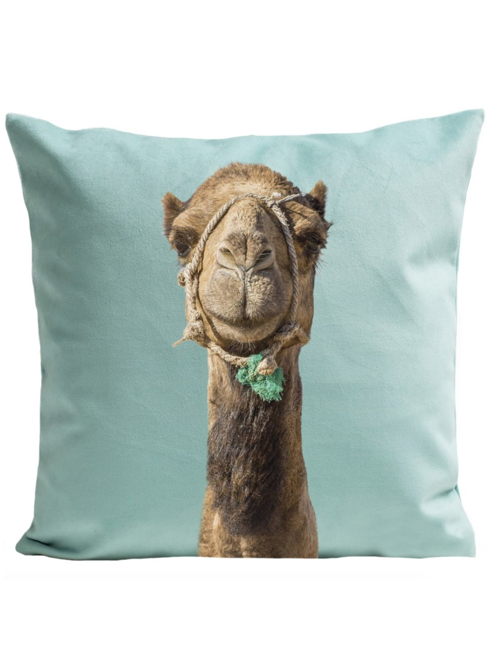 Best Vegan Pillow: Camel Pillow by Art Pilo