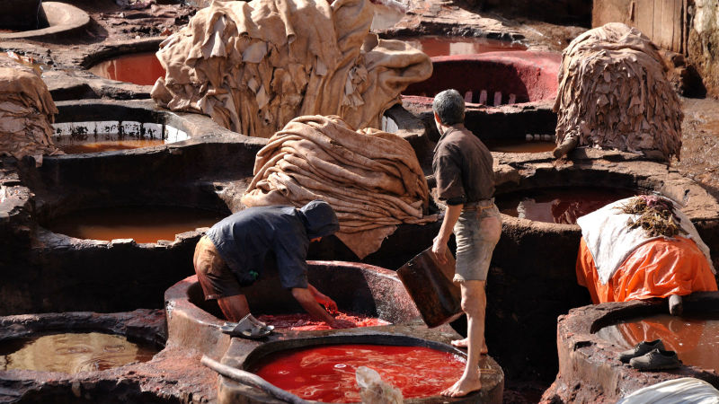leather tanneries.jpg