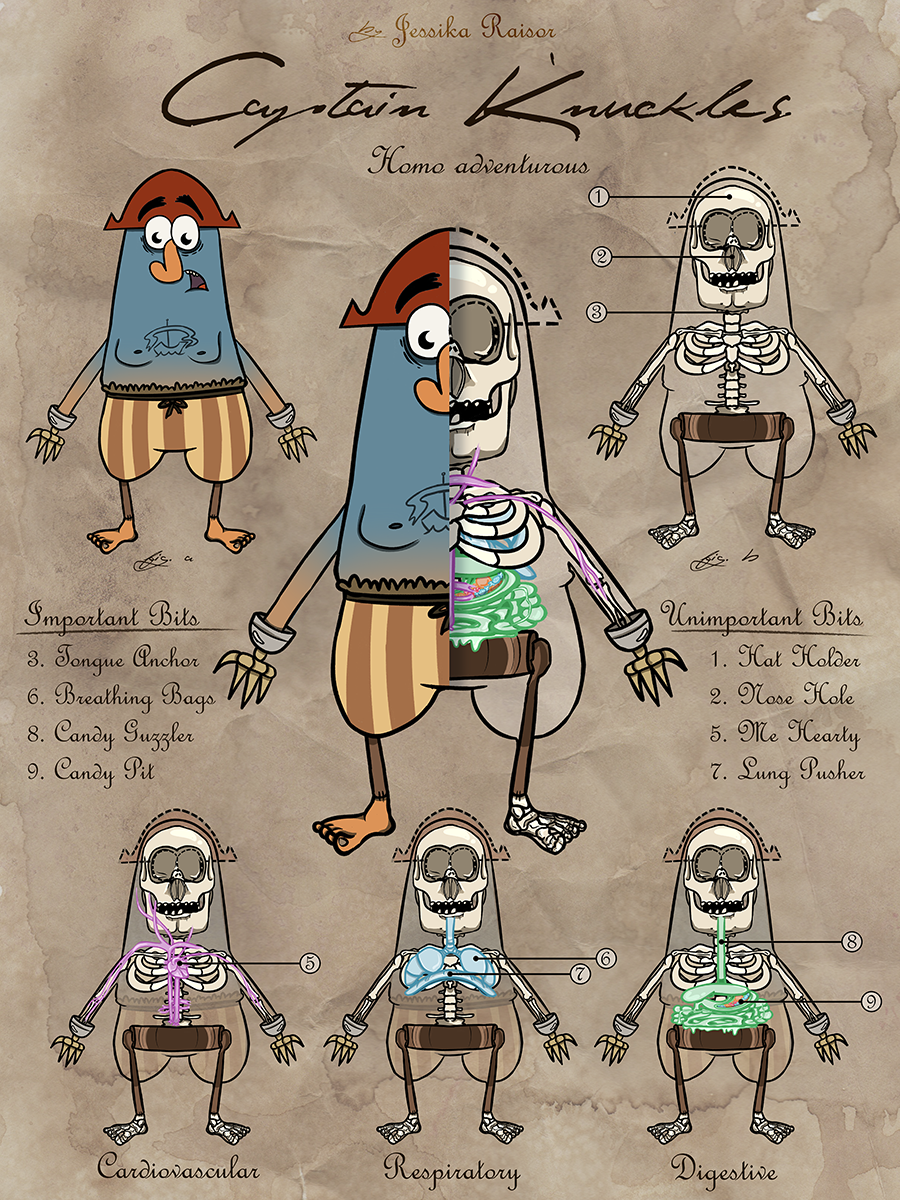 Captain K'nuckles Anatomy Poster