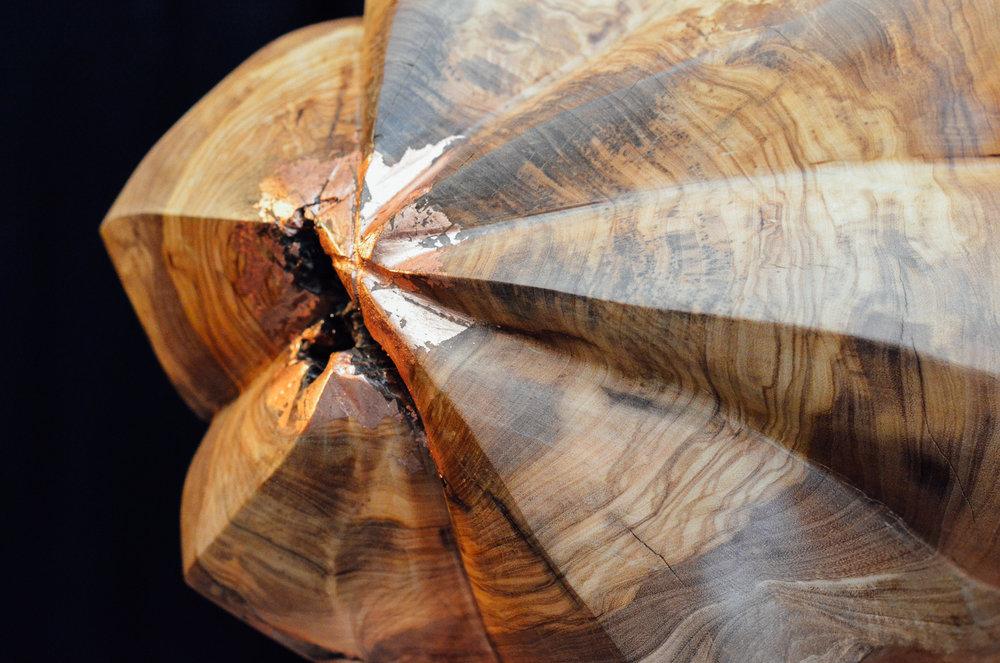 De Stervrucht is eveneens een beeld van Olijfhout op een koperen sokkel.              Op onderstaande foto; een detail van de slak op de koperen sokkel.