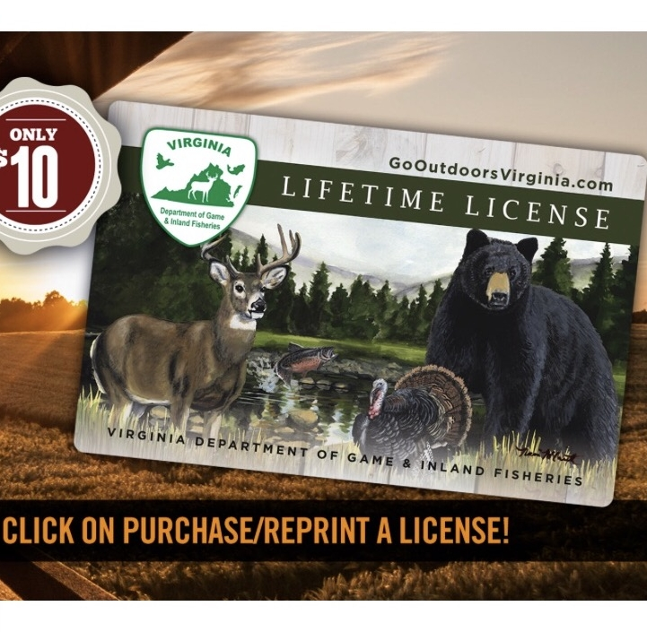 dgif hunting and fishing licenses — thicket design