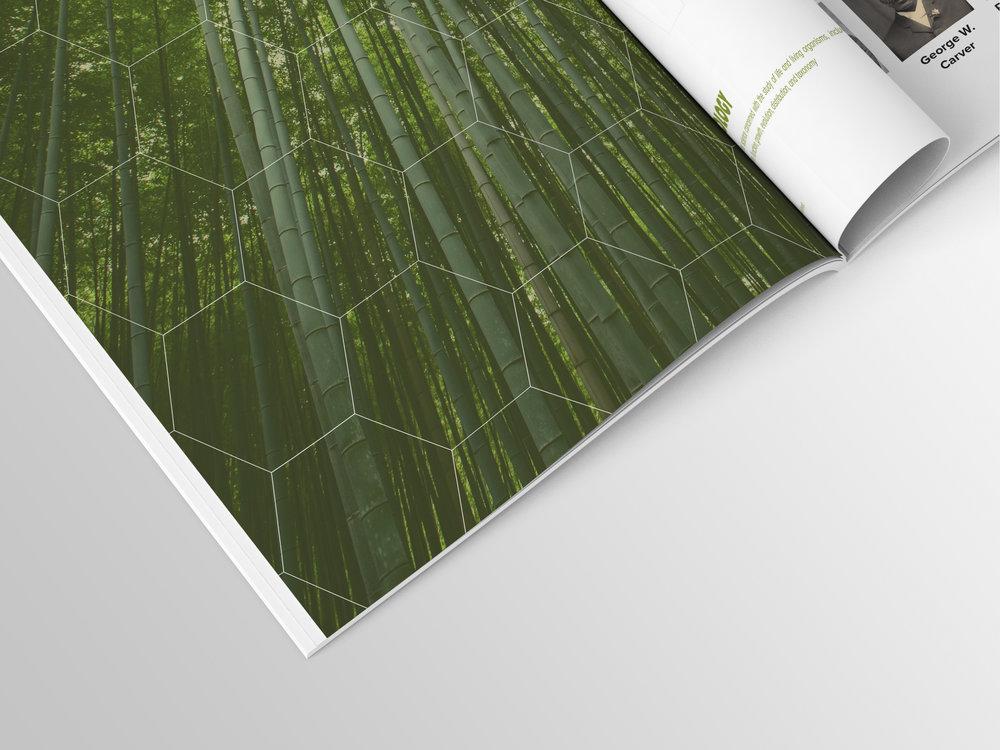 ForgetUsNot_Inner-Closeup.jpg