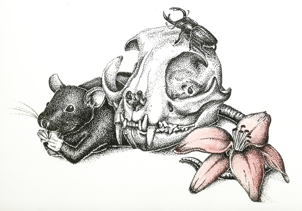 Stipple Project, 2012