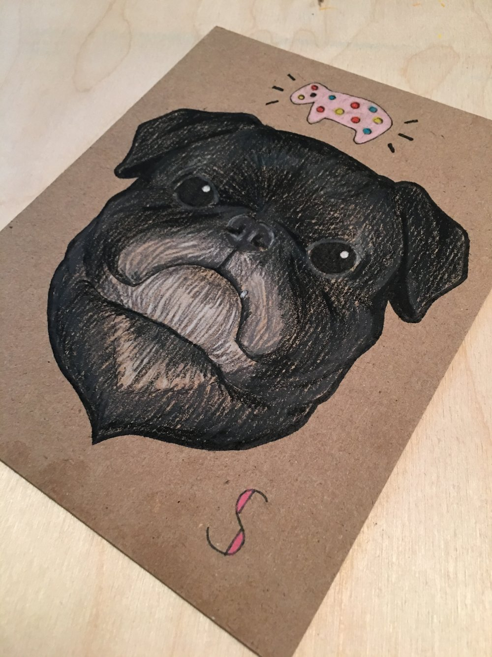 Siouxsie the Pug, 2015