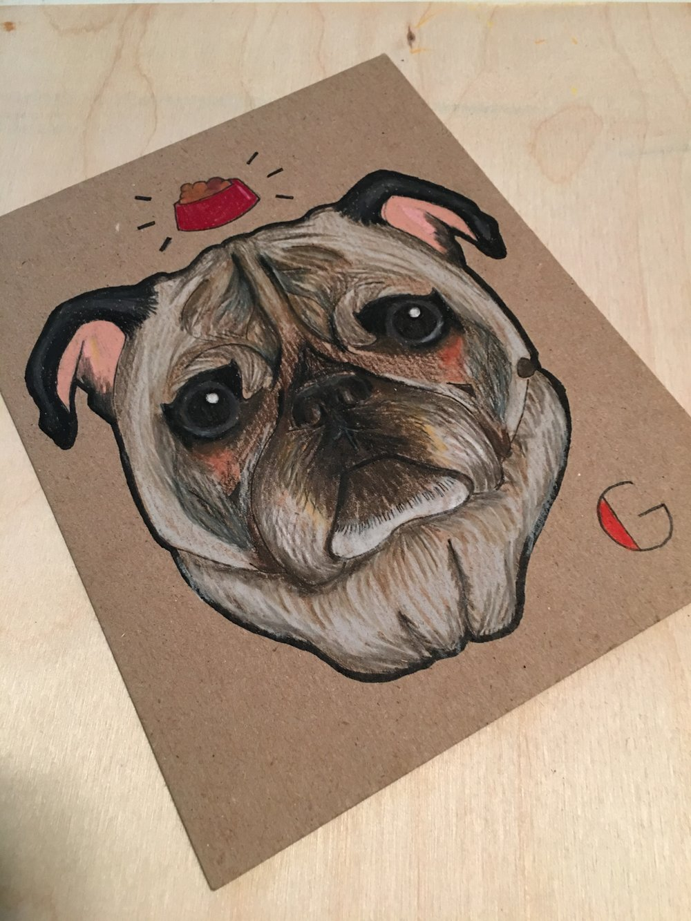Geno the Pug, 2015